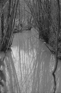 Rivière à Jouy sur Morin