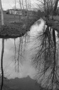 Rivière en Vendée